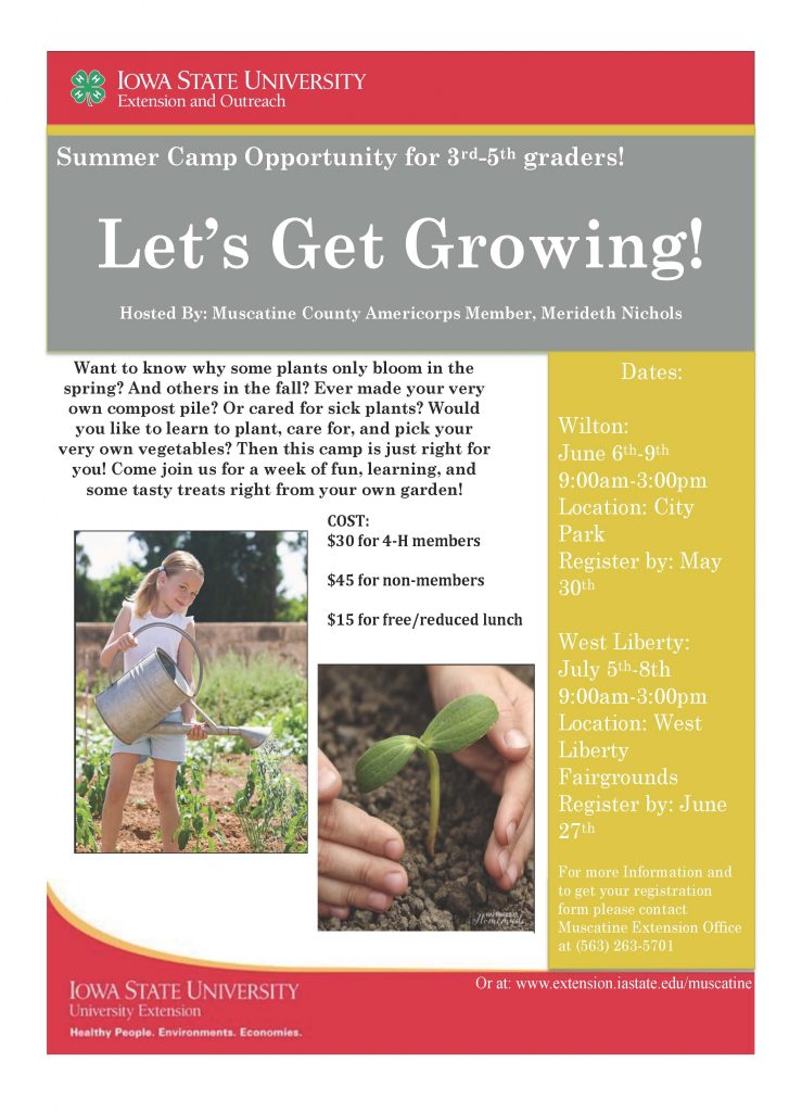 Flyer- Let's get growing